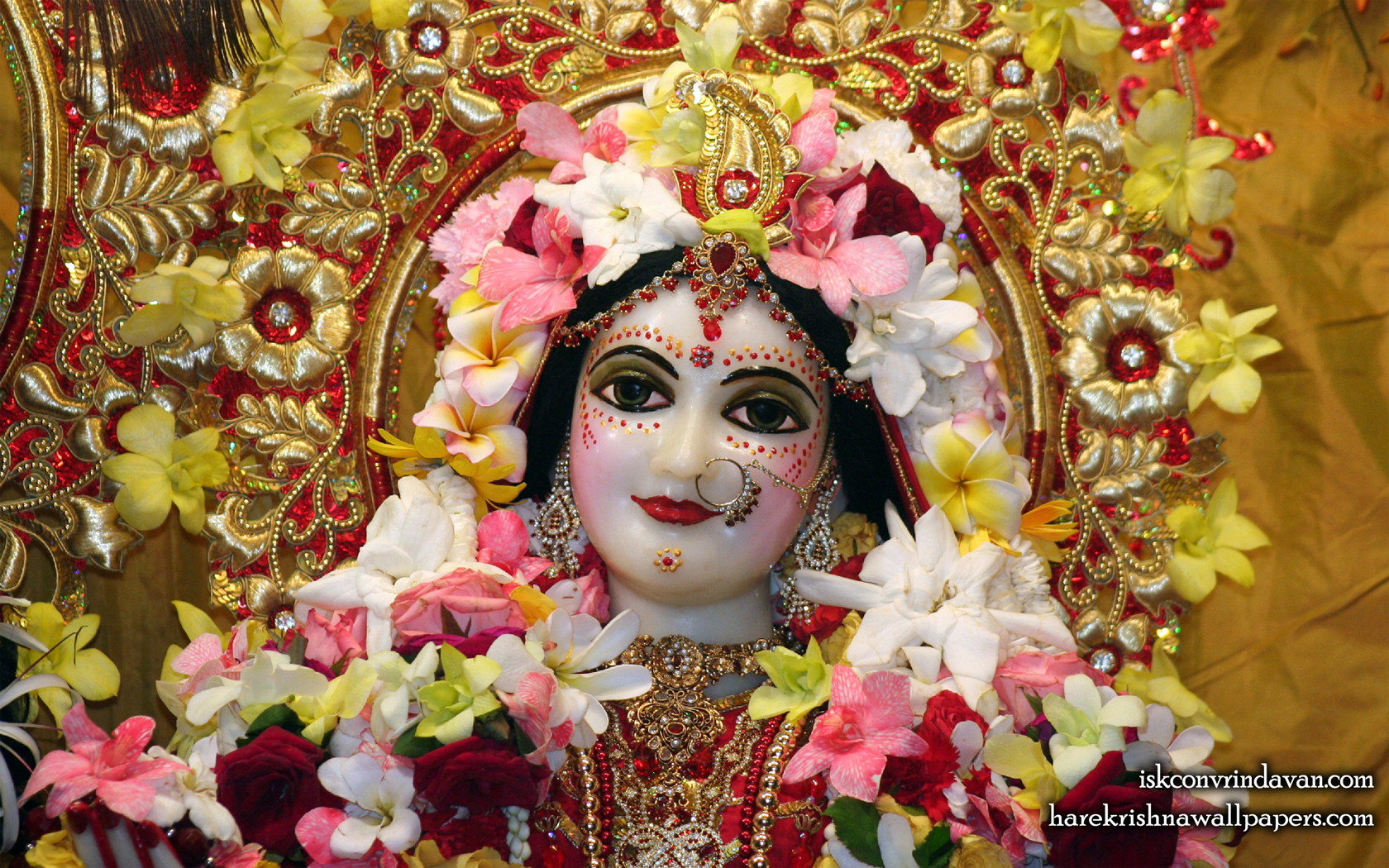 Sri Radha Close up Wallpaper (008) Size 1680x1050 Download
