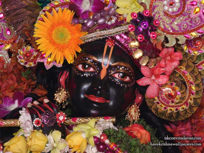 Sri Shyamsundar Close up Wallpaper (008)