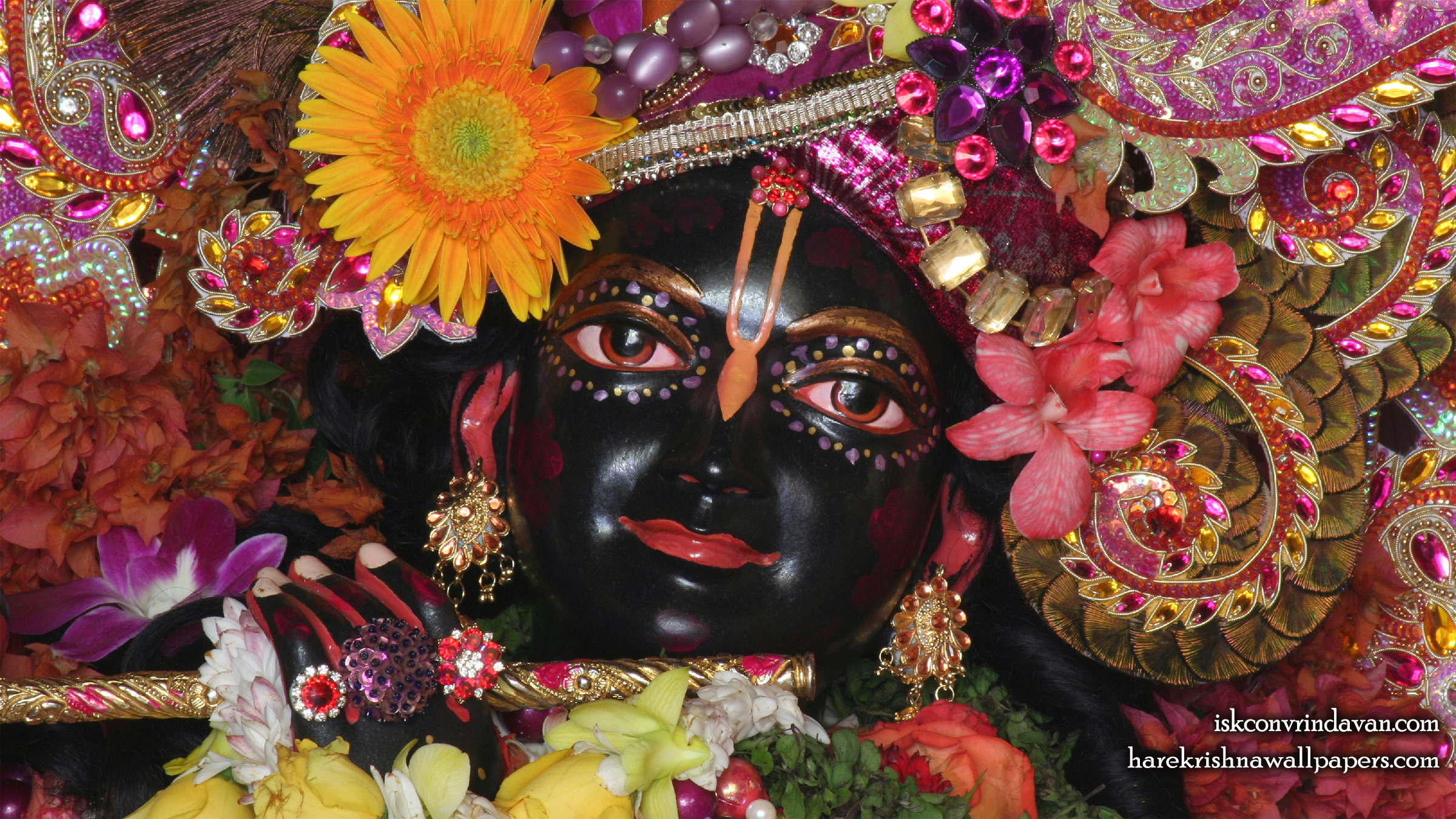 Sri Shyamsundar Close up Wallpaper (008) Size 2400x1350 Download