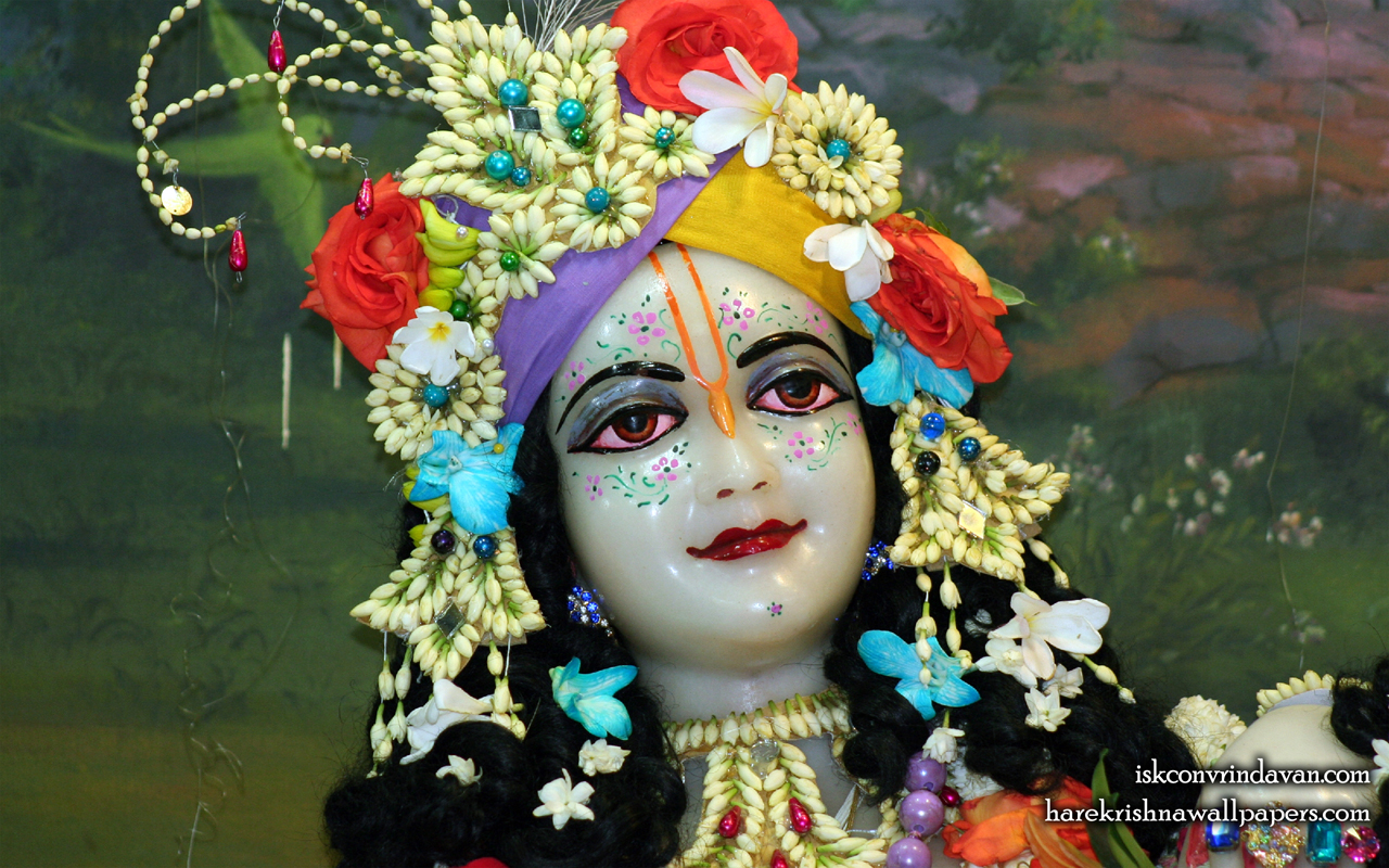 Sri Balaram Close up Wallpaper (009) Size 1280x800 Download
