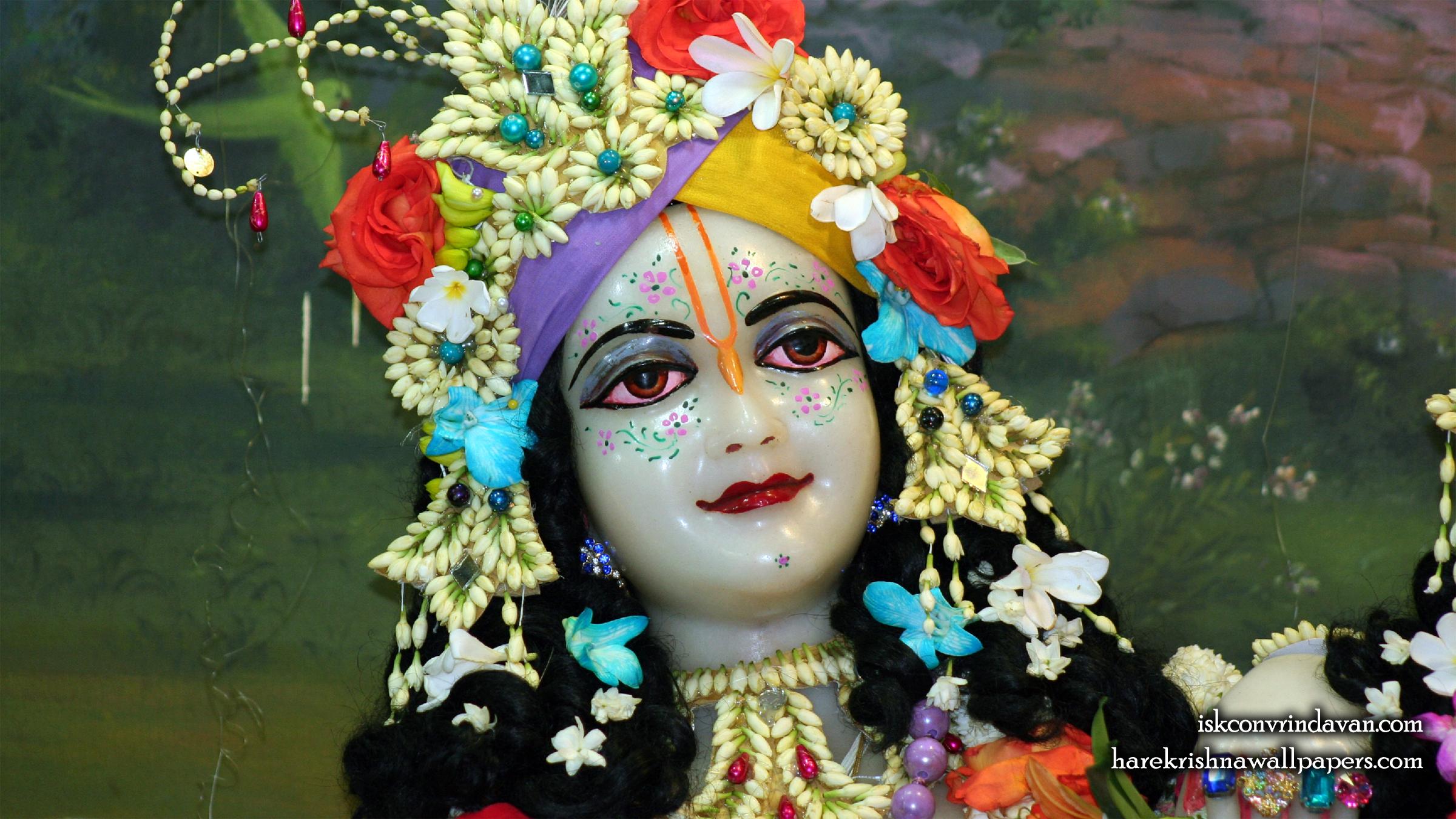 Sri Balaram Close up Wallpaper (009) Size 2400x1350 Download