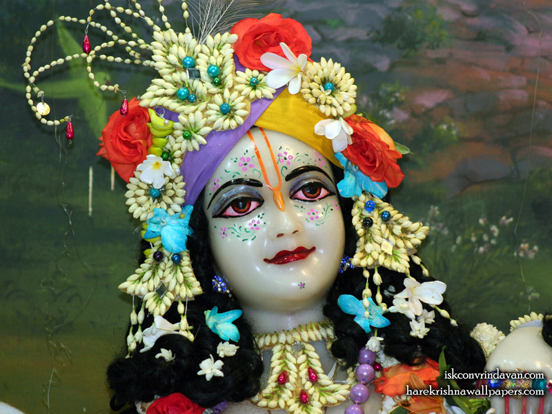 Sri Balaram Close up Wallpaper (009) Size 800x600 Download
