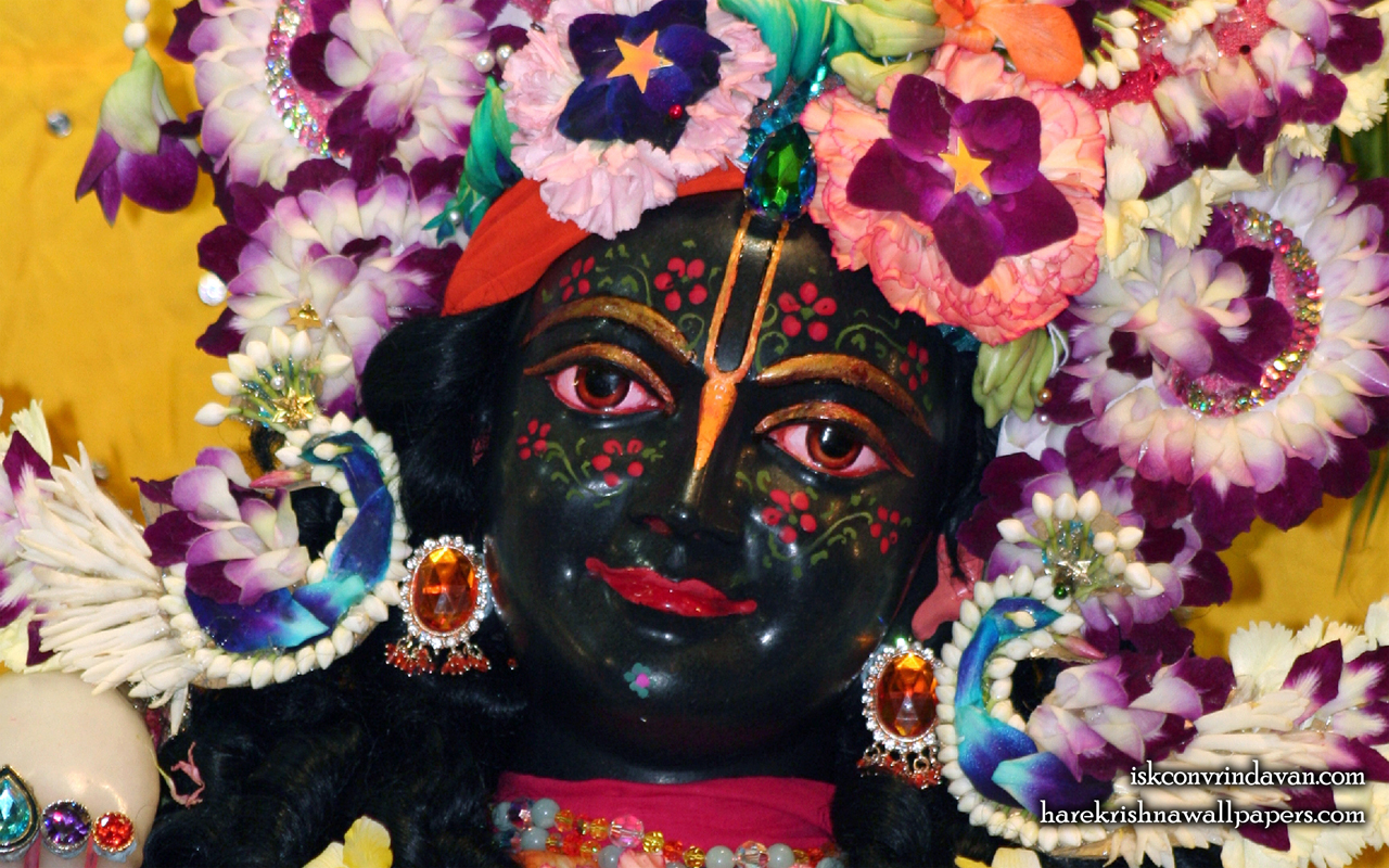 Sri Krishna Close up Wallpaper (009) Size 1280x800 Download