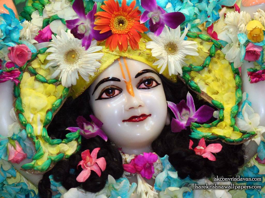 Sri Nitai Close up Wallpaper (009) Size 1024x768 Download