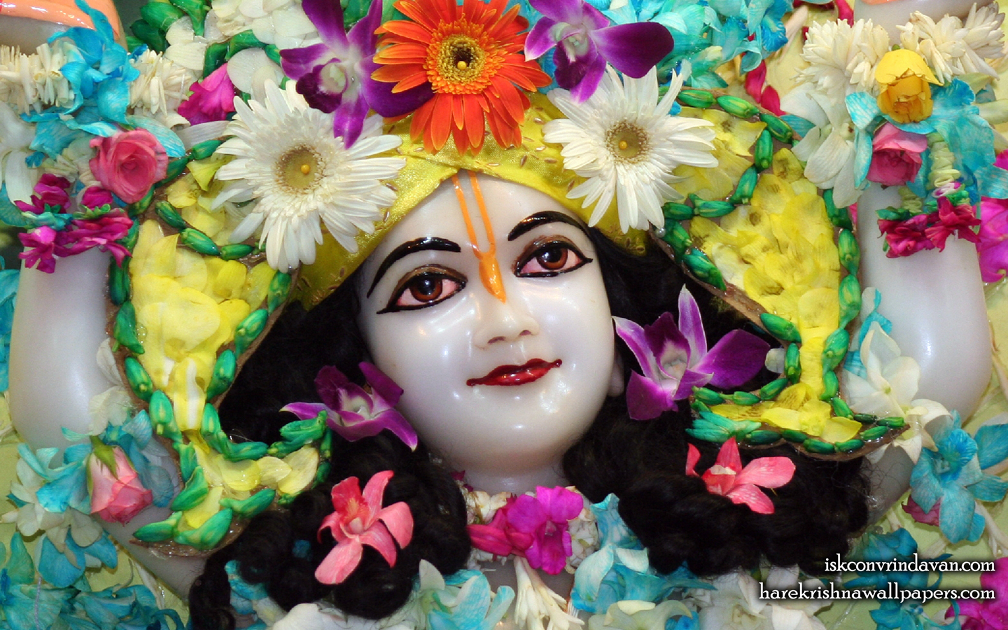 Sri Nitai Close up Wallpaper (009) Size 1440x900 Download