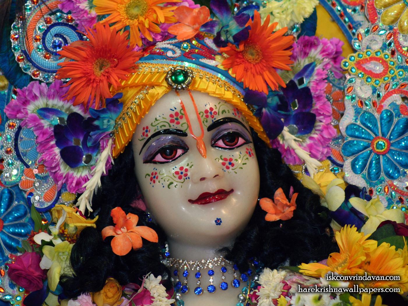 Sri Balaram Close up Wallpaper (010) Size 1400x1050 Download