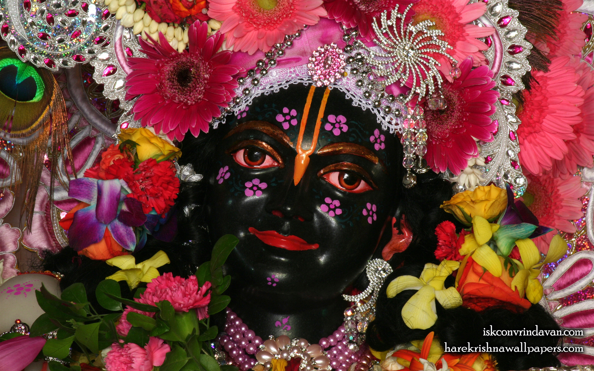 Sri Krishna Close up Wallpaper (010) Size 1920x1200 Download