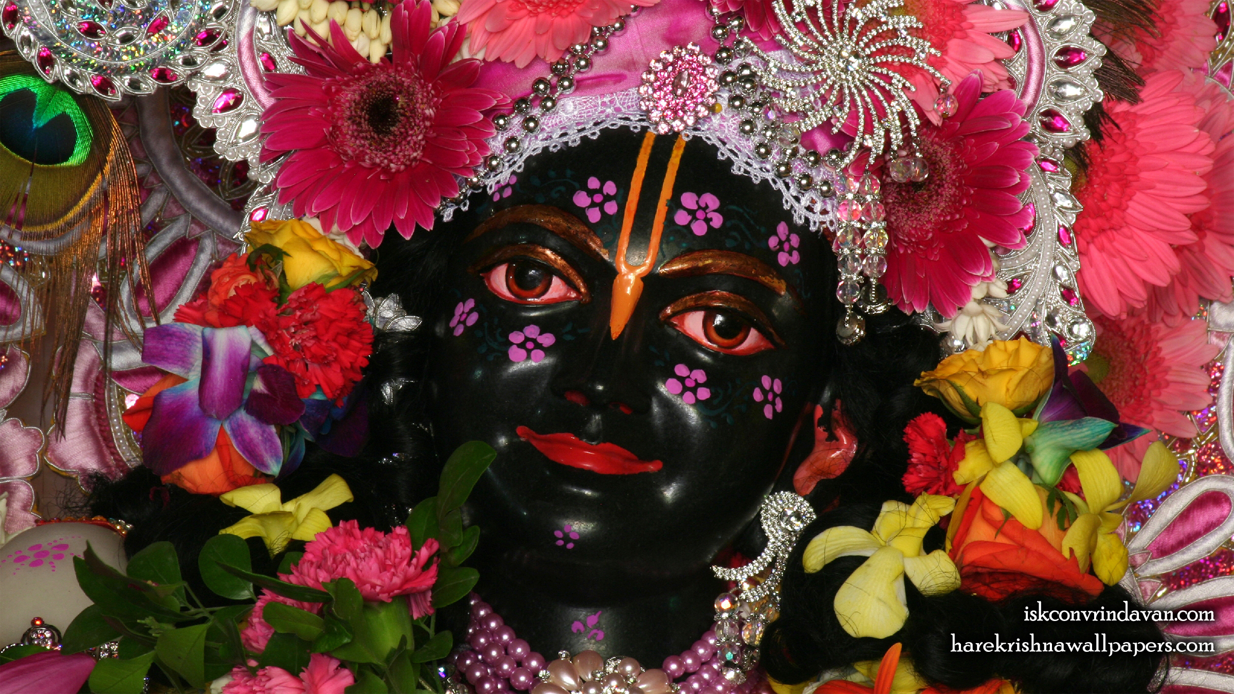 Sri Krishna Close up Wallpaper (010) Size 2400x1350 Download