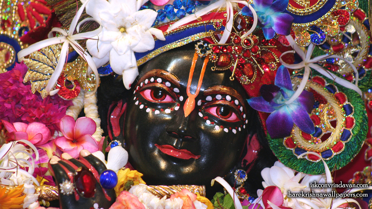Sri Shyamsundar Close up Wallpaper (010) Size1280x720 Download