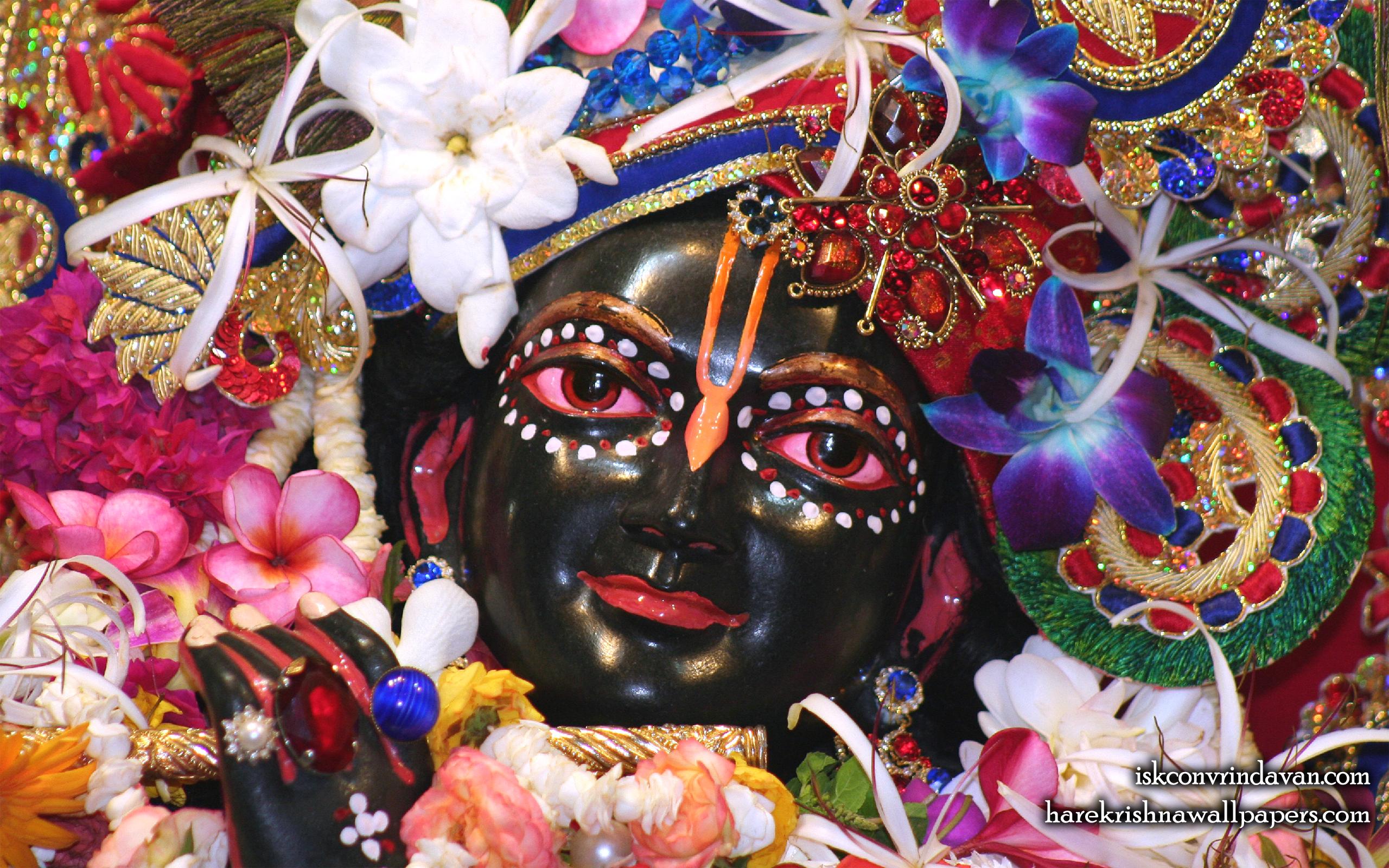 Sri Shyamsundar Close up Wallpaper (010) Size 2560x1600 Download