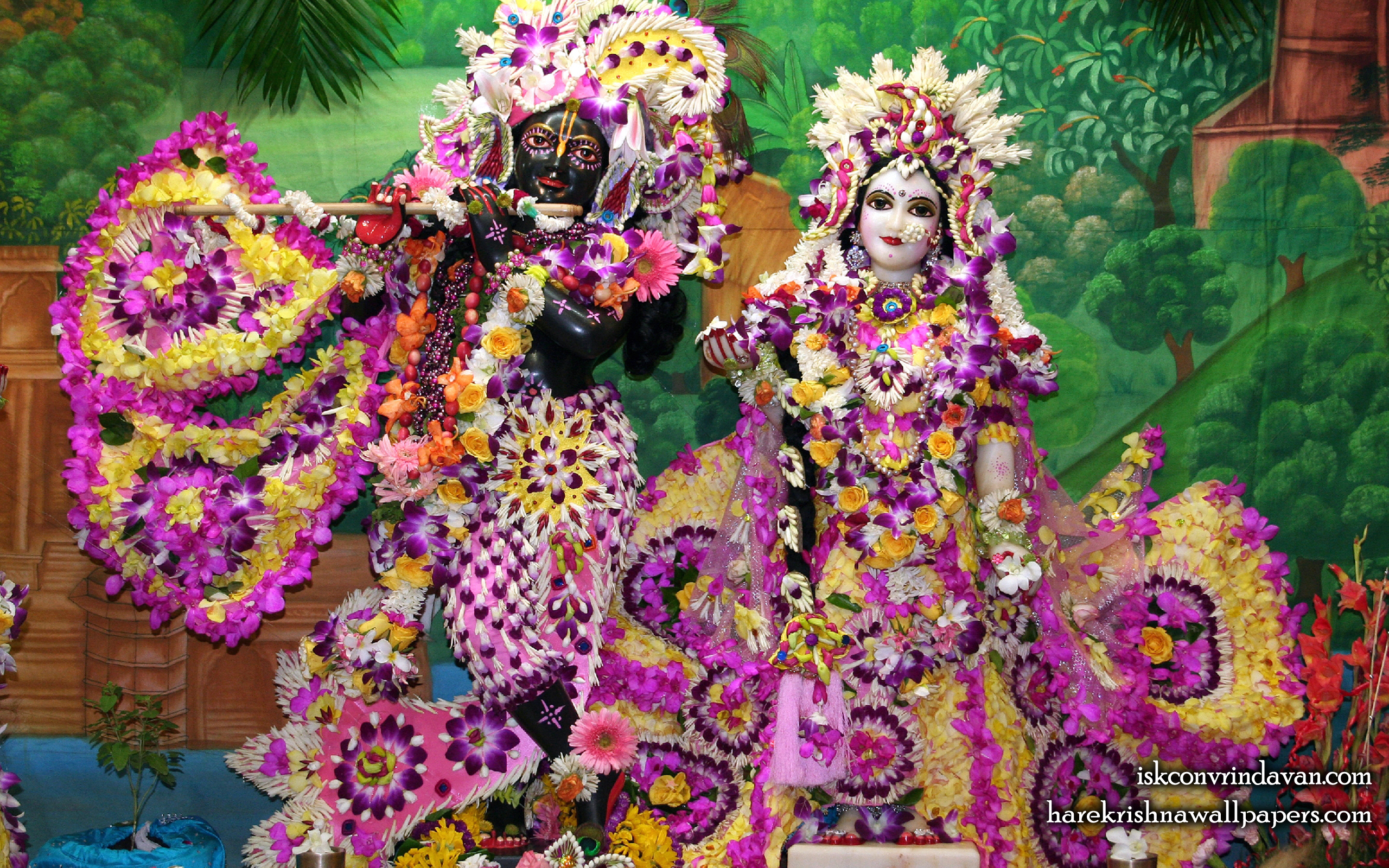 Sri Sri Radha Shyamsundar Wallpaper (010) Size 2560x1600 Download
