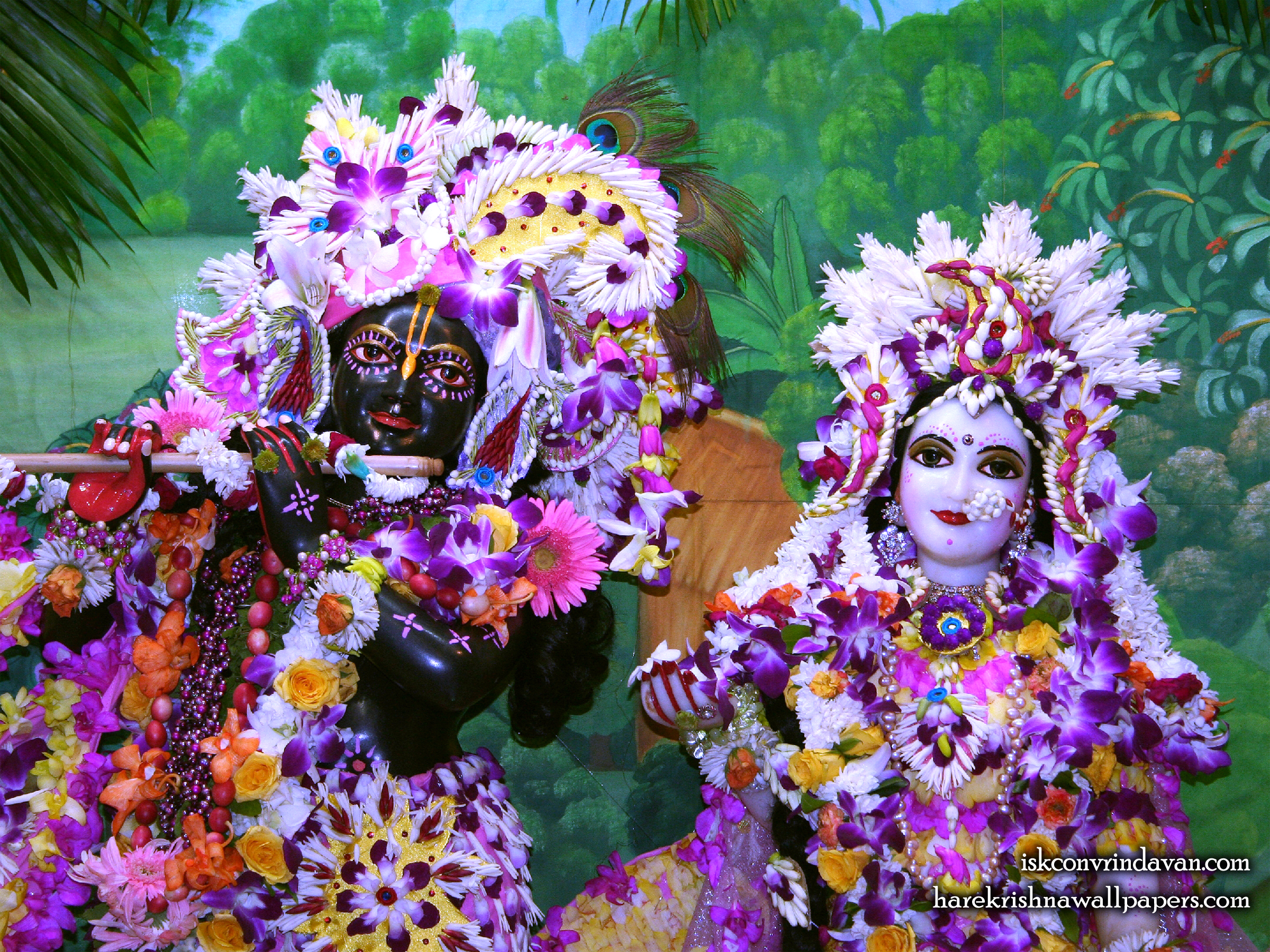 Sri Sri Radha Shyamsundar Close up Wallpaper (010) Size 2400x1800 Download