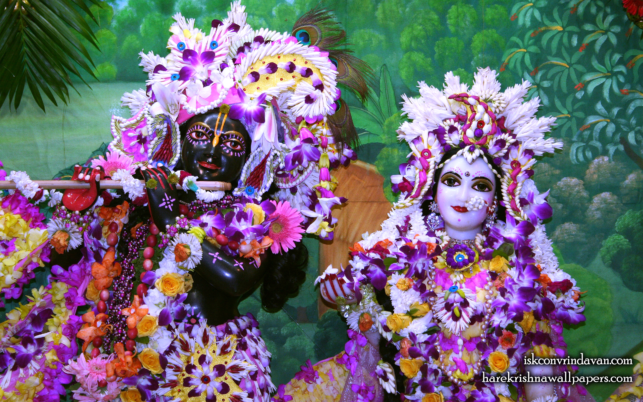 Sri Sri Radha Shyamsundar Close up Wallpaper (010) Size 2560x1600 Download