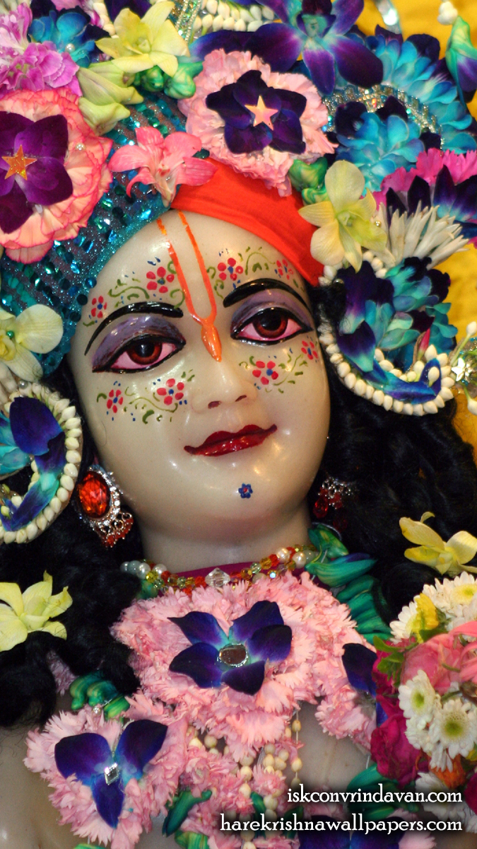 Sri Balaram Close up Wallpaper (011) Size 675x1200 Download