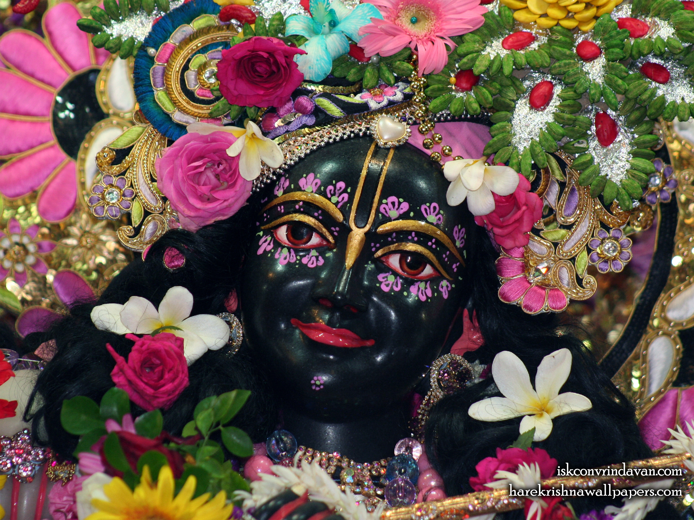 Sri Krishna Close up Wallpaper (011) Size 2400x1800 Download