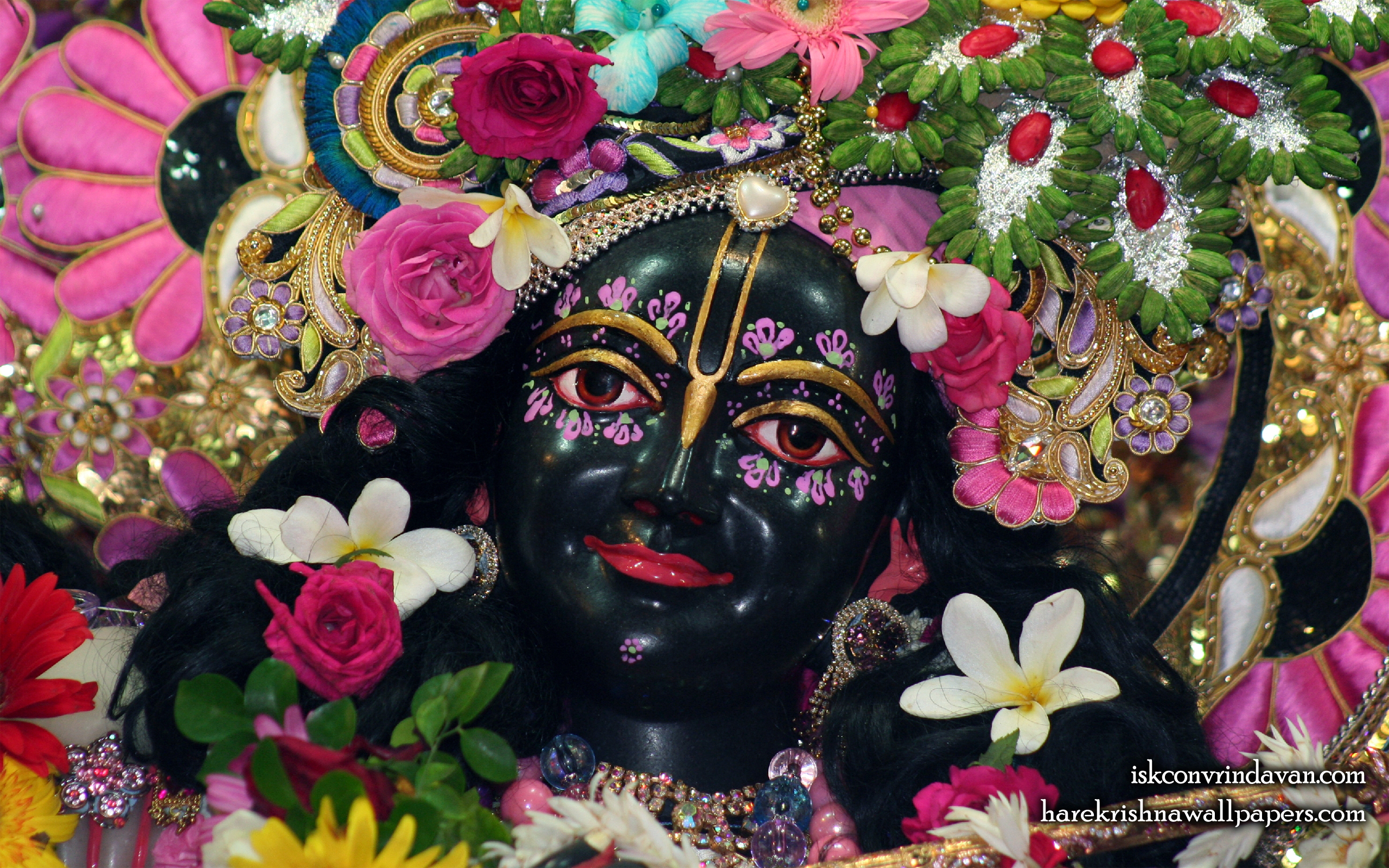 Sri Krishna Close up Wallpaper (011) Size 2560x1600 Download