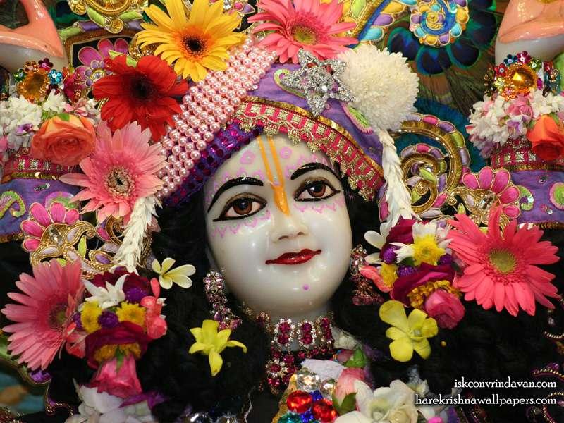 Sri Nitai Close up Wallpaper (011)