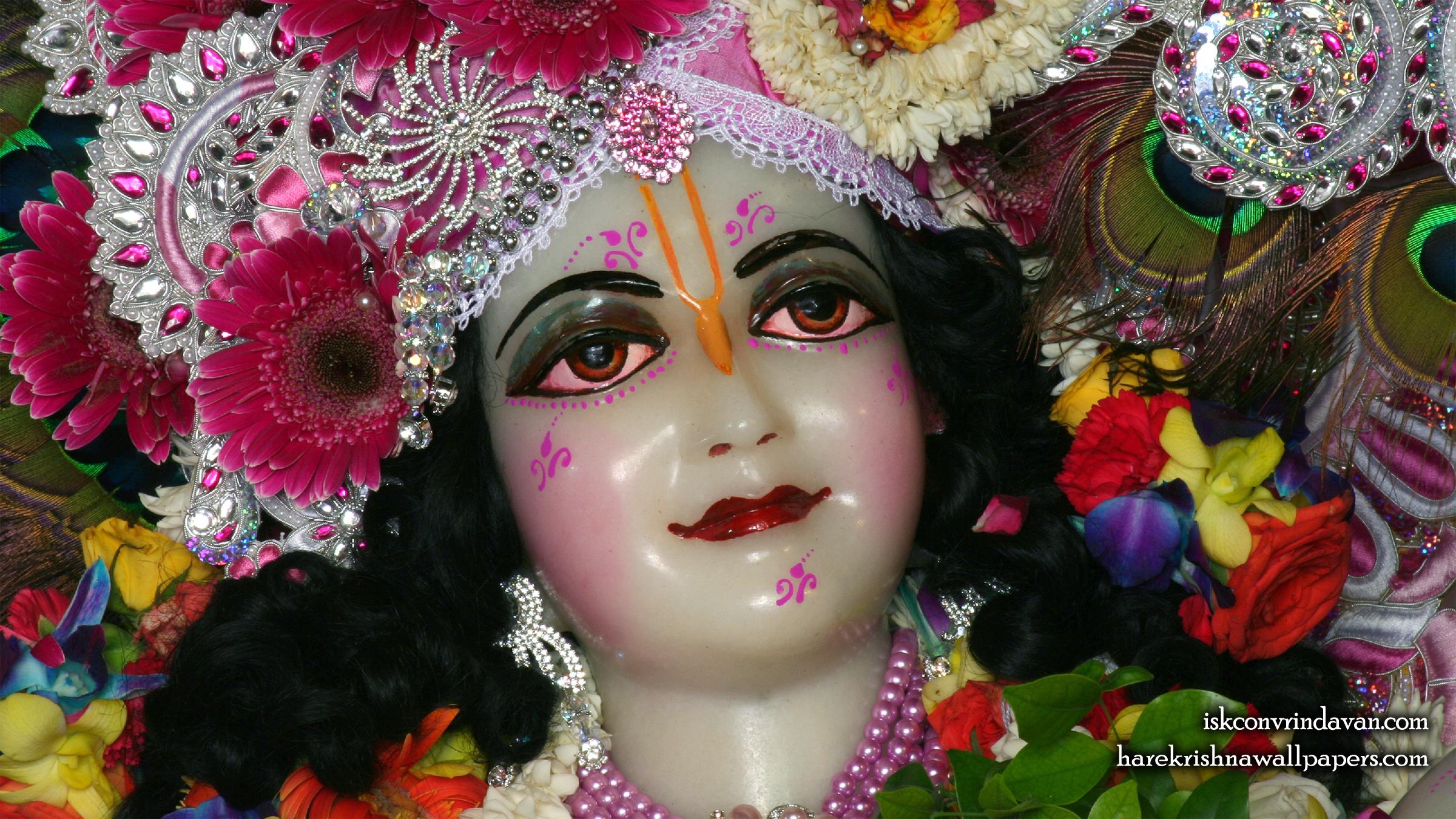 Sri Balaram Close up Wallpaper (012) Size 2400x1350 Download