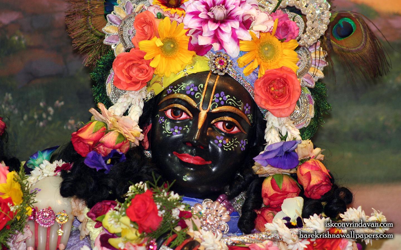 Sri Krishna Close up Wallpaper (012) Size 1440x900 Download