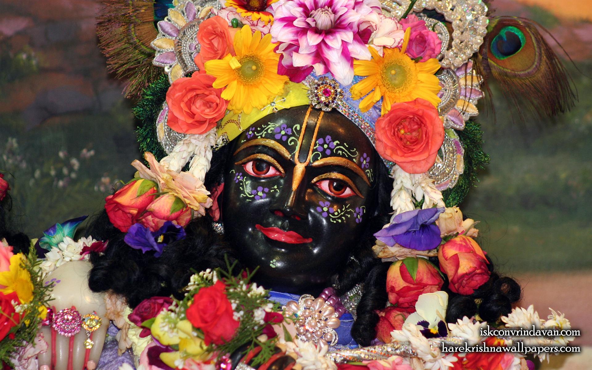 Sri Krishna Close up Wallpaper (012) Size 1920x1200 Download