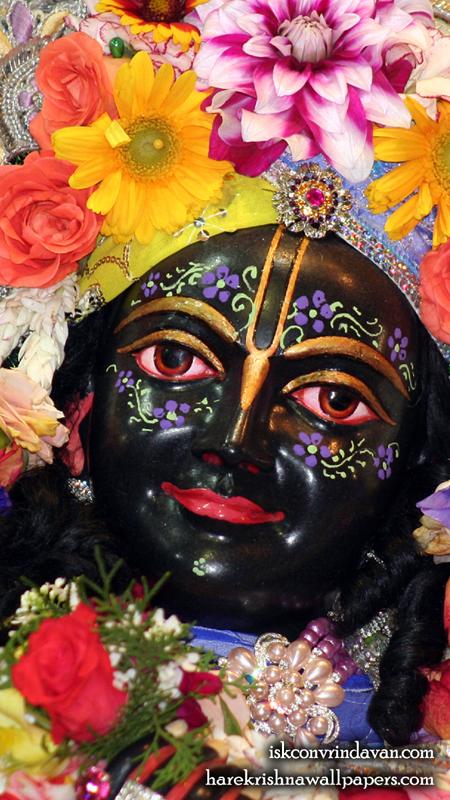 Sri Krishna Close up Wallpaper (012) Size 450x800 Download