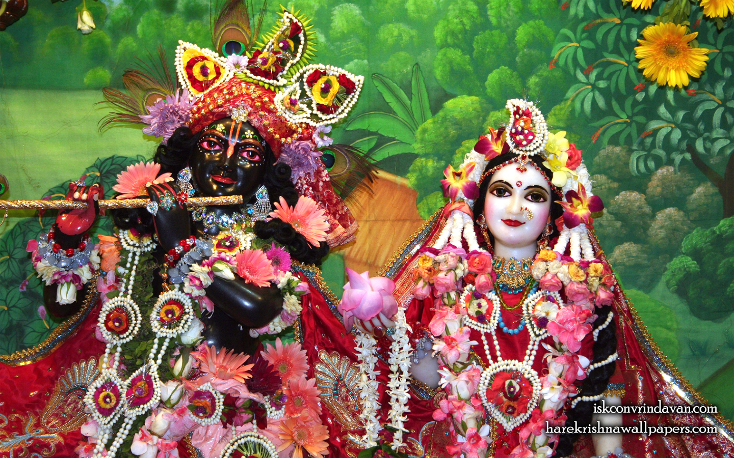 Sri Sri Radha Shyamsundar Close up Wallpaper (012) Size 1440x900 Download