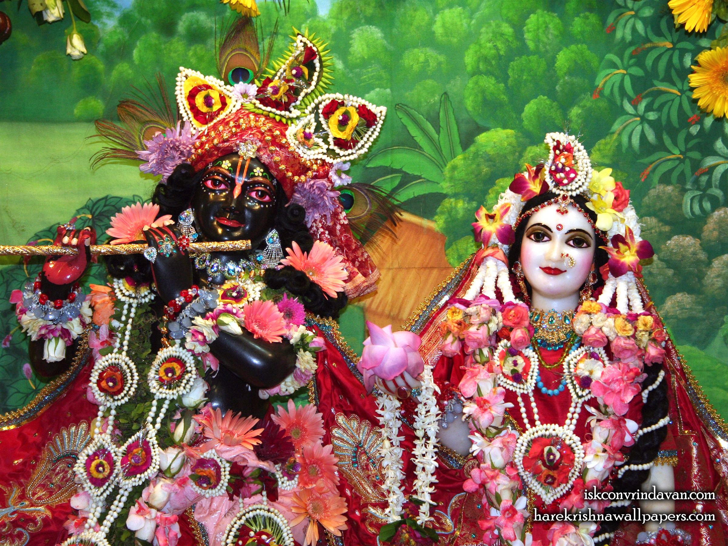 Sri Sri Radha Shyamsundar Close up Wallpaper (012) Size 2400x1800 Download