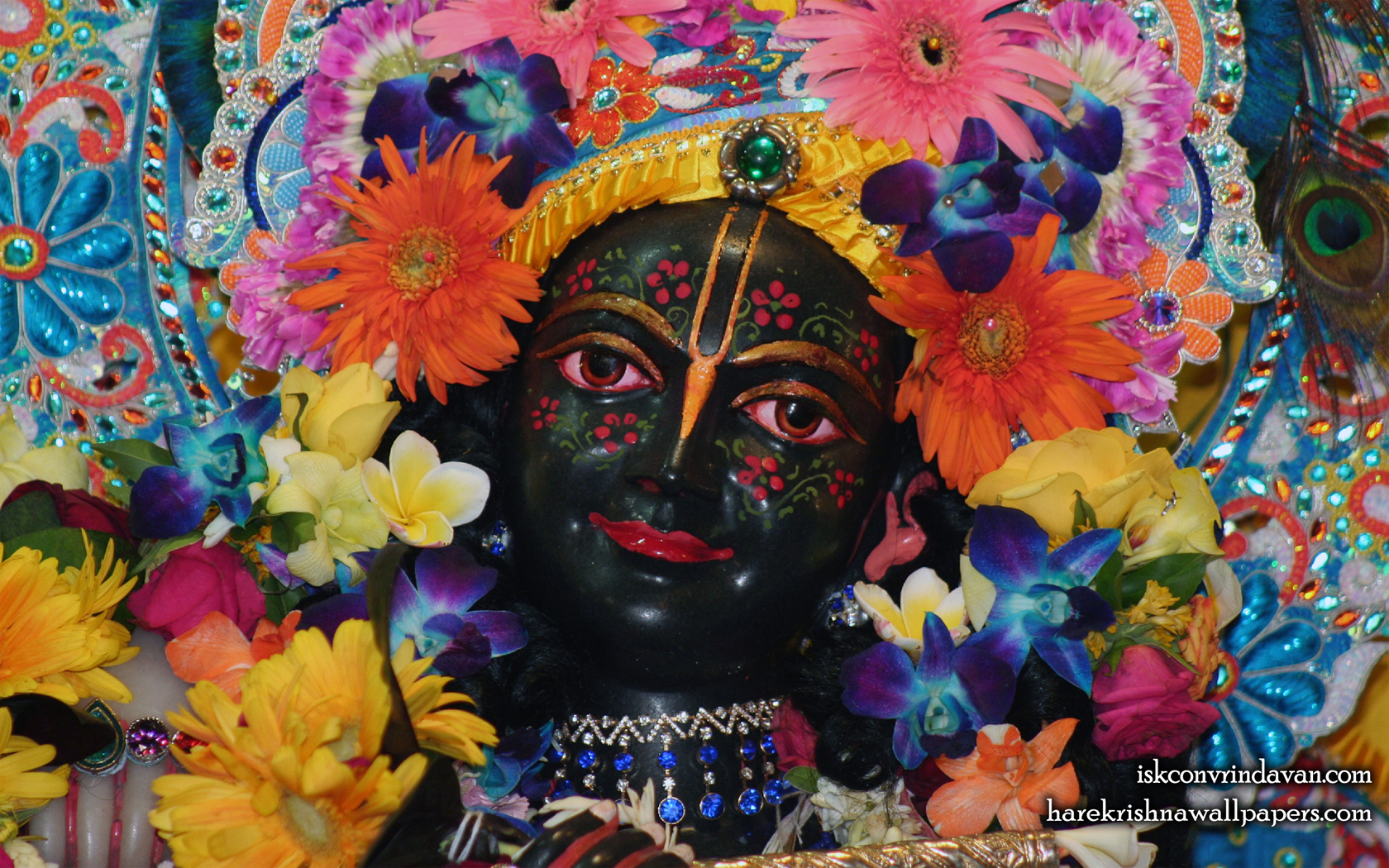 Sri Krishna Close up Wallpaper (013) Size 1680x1050 Download