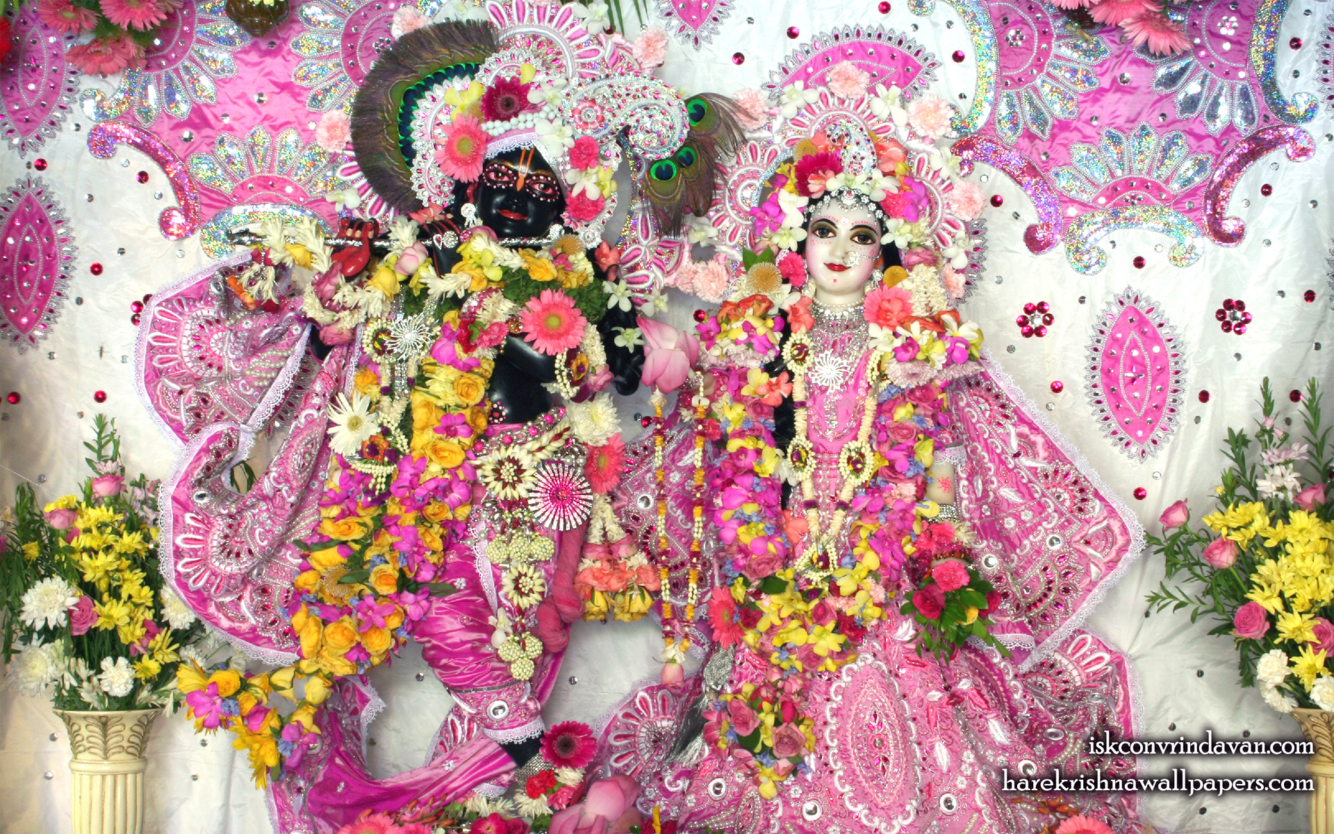 Sri Sri Radha Shyamsundar Wallpaper (015) Size 1920x1200 Download