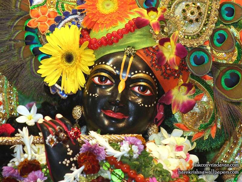 Sri Shyamsundar Close up Wallpaper (017)