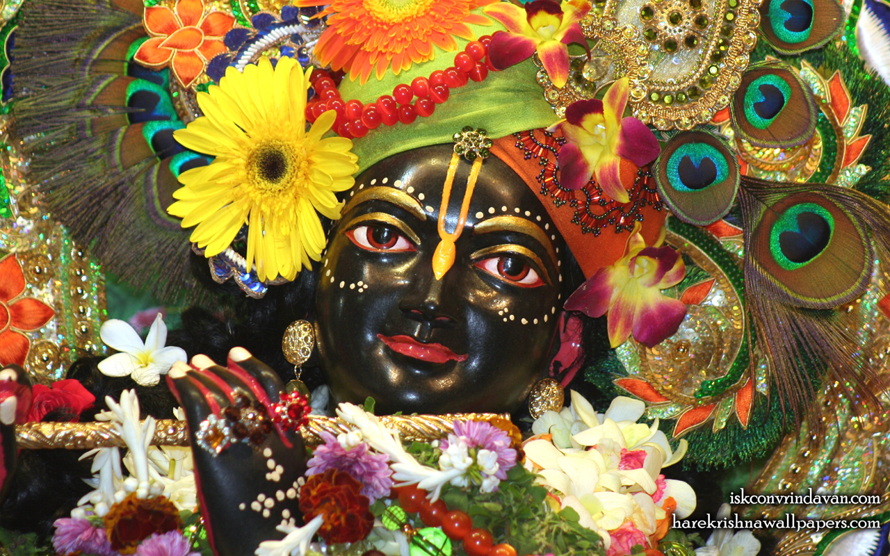 Sri Shyamsundar Close up Wallpaper (017) Size 1280x800 Download