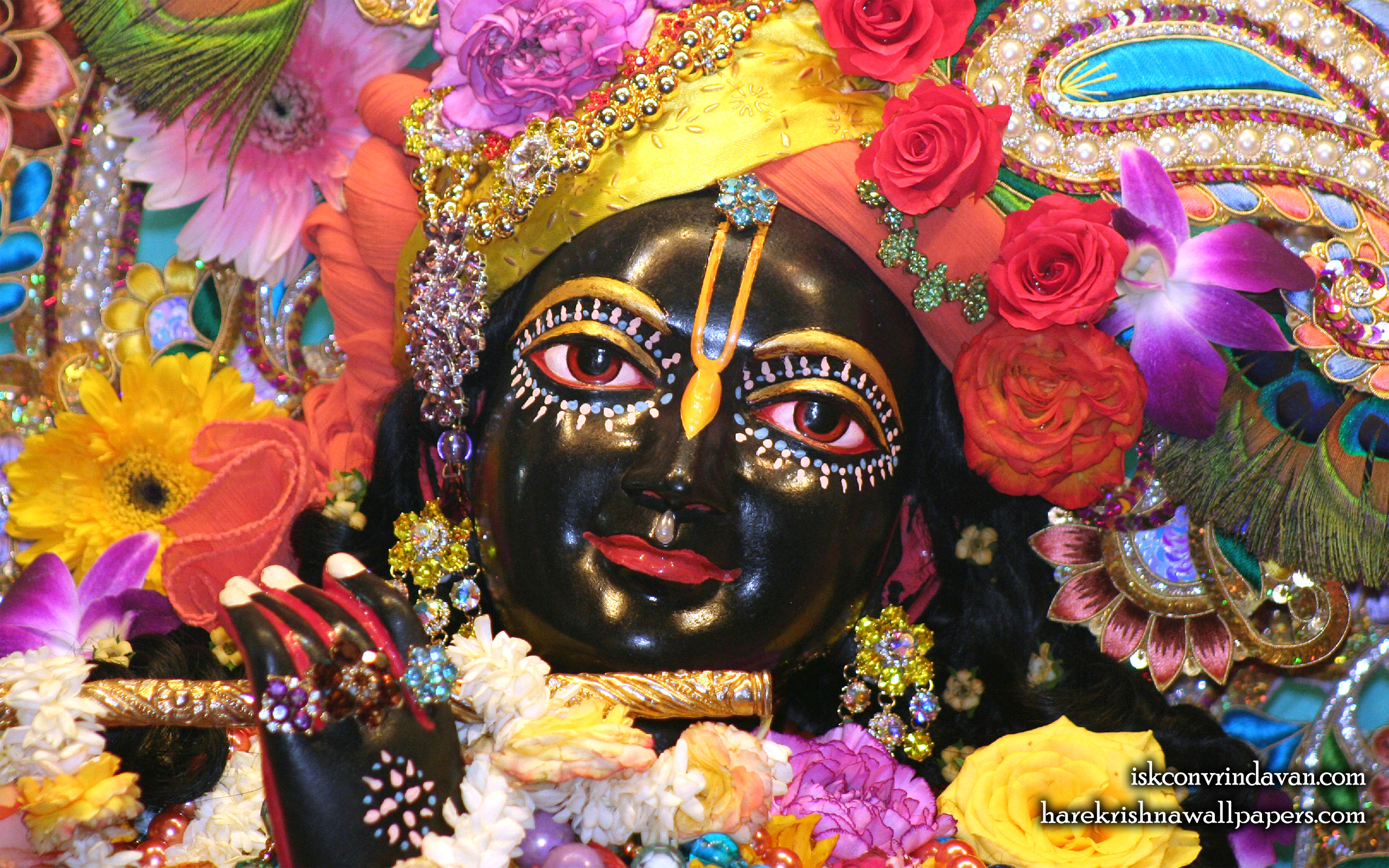 Sri Shyamsundar Close up Wallpaper (018) Size 2560x1600 Download