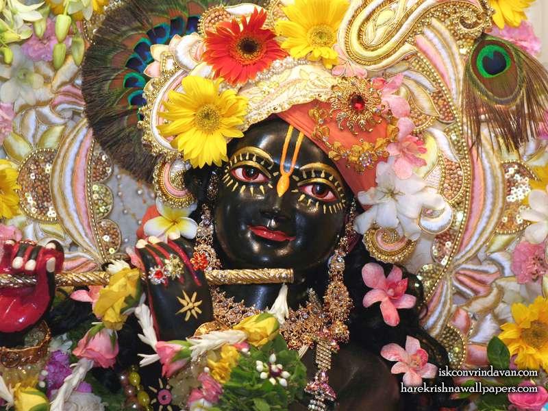 Sri Shyamsundar Close up Wallpaper (019)