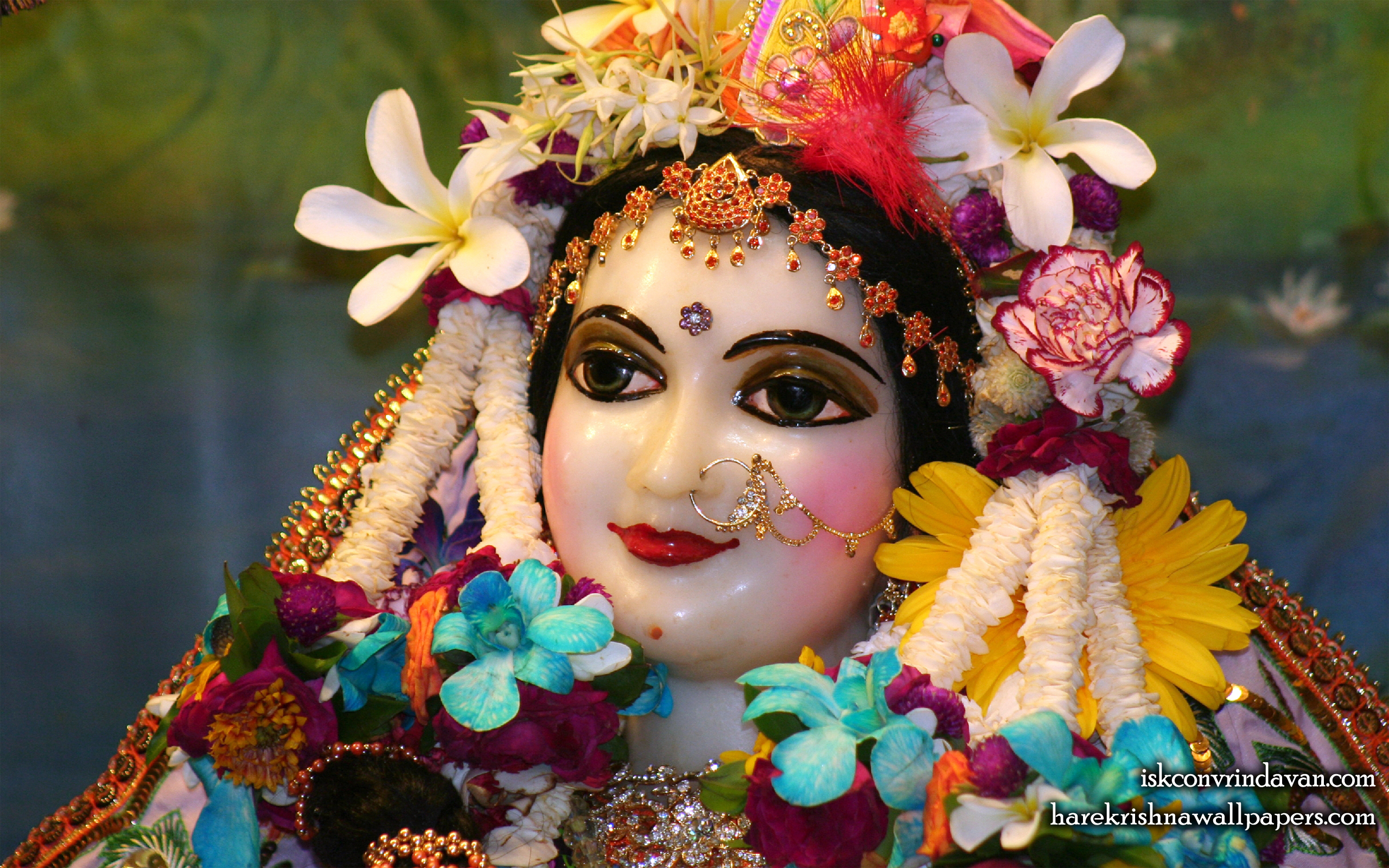 Sri Radha Close up Wallpaper (020) Size 2560x1600 Download