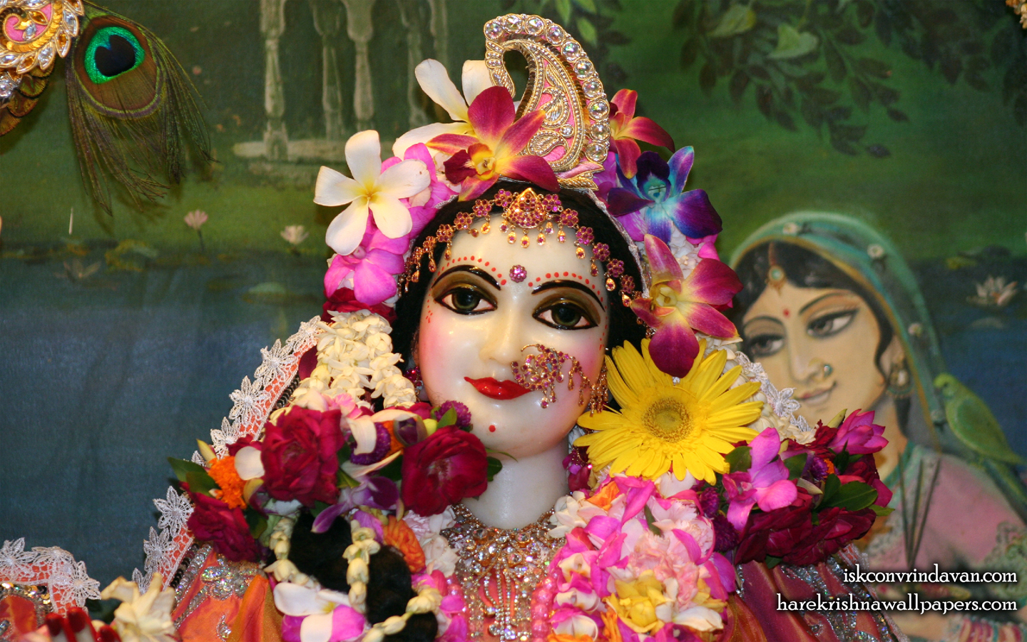 Sri Radha Close up Wallpaper (022) Size 1440x900 Download