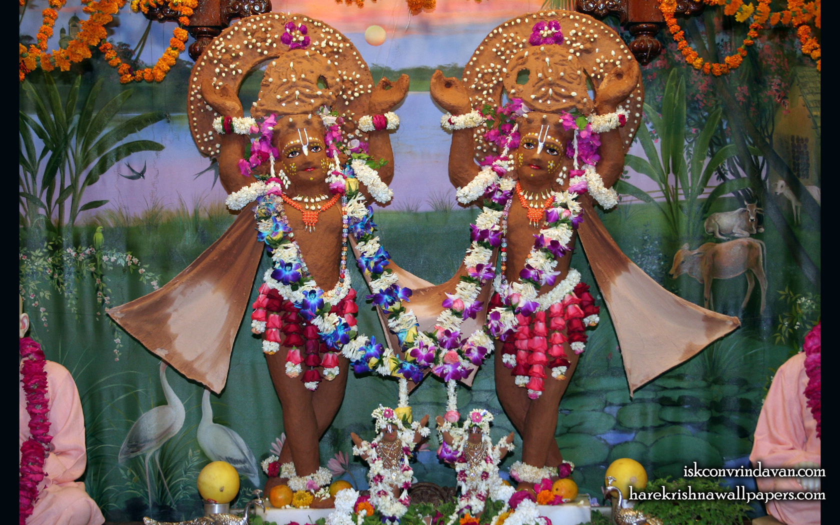 Sri Sri Gaura Nitai Wallpaper (084) Size 1680x1050 Download
