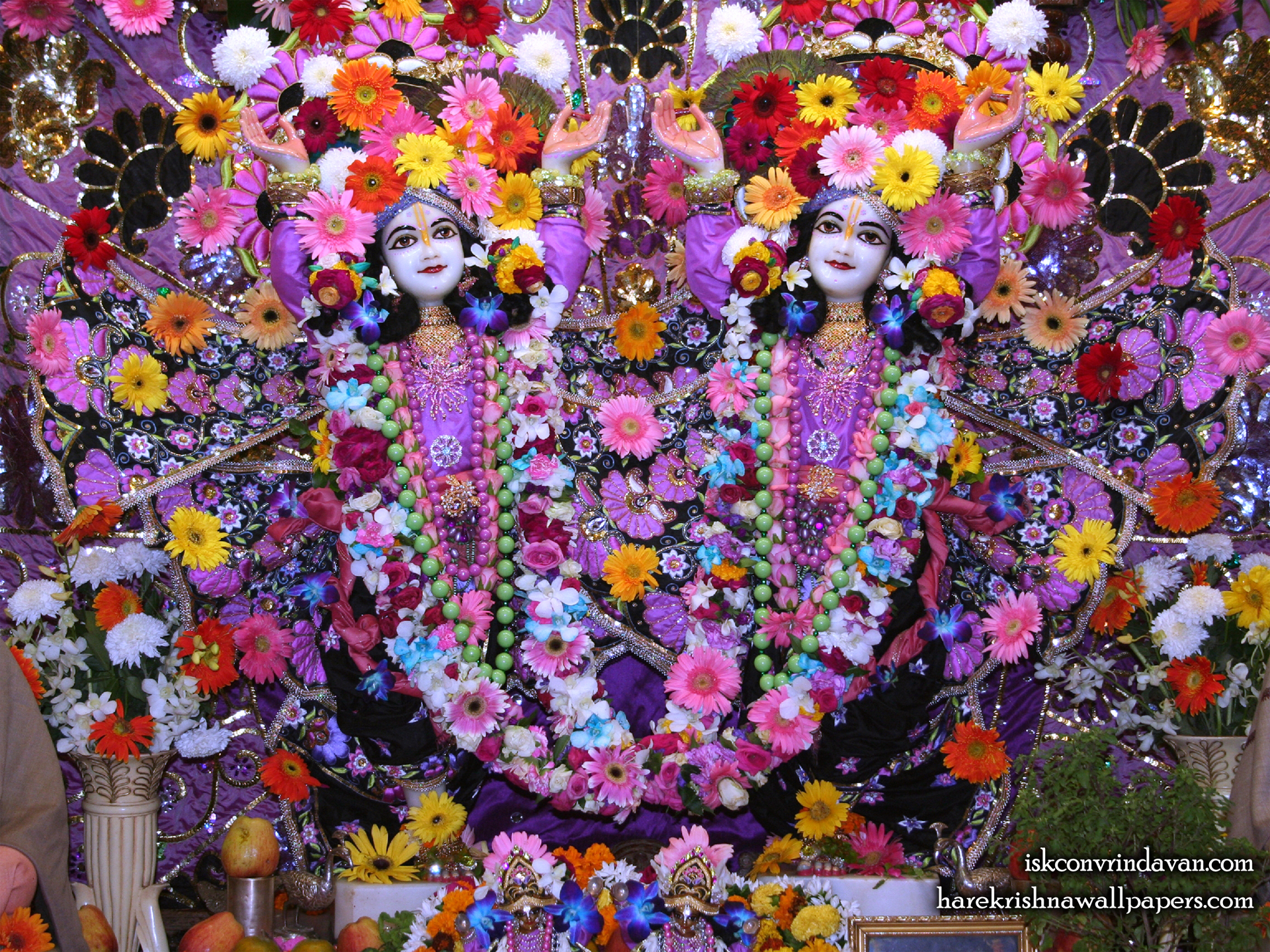 Sri Sri Gaura Nitai Wallpaper (086) Size 1920x1440 Download