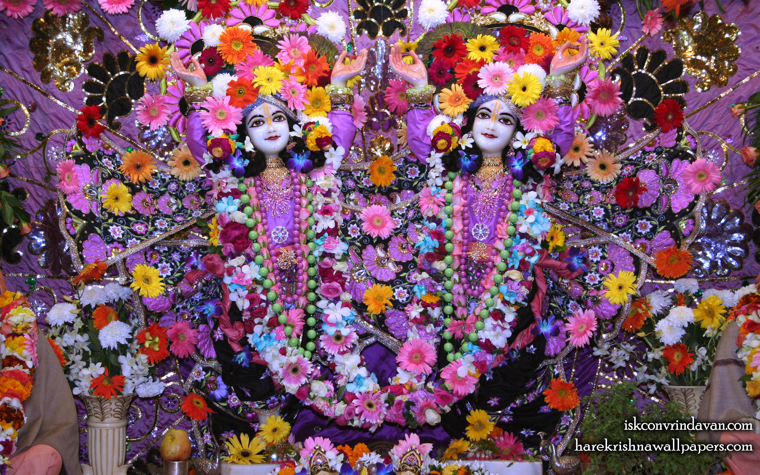 Sri Sri Gaura Nitai Wallpaper (086) Size 2560x1600 Download
