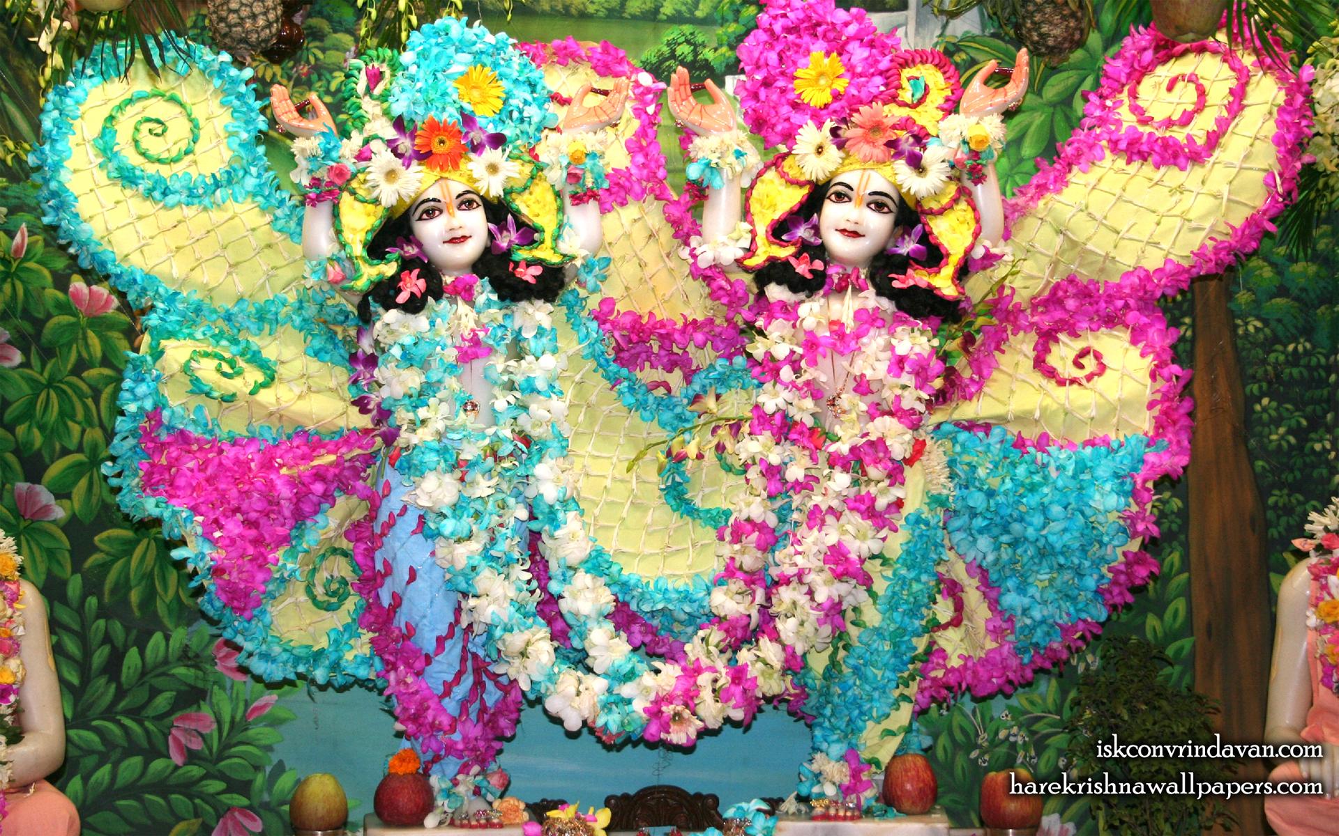 Sri Sri Gaura Nitai Wallpaper (087) Size 1920x1200 Download