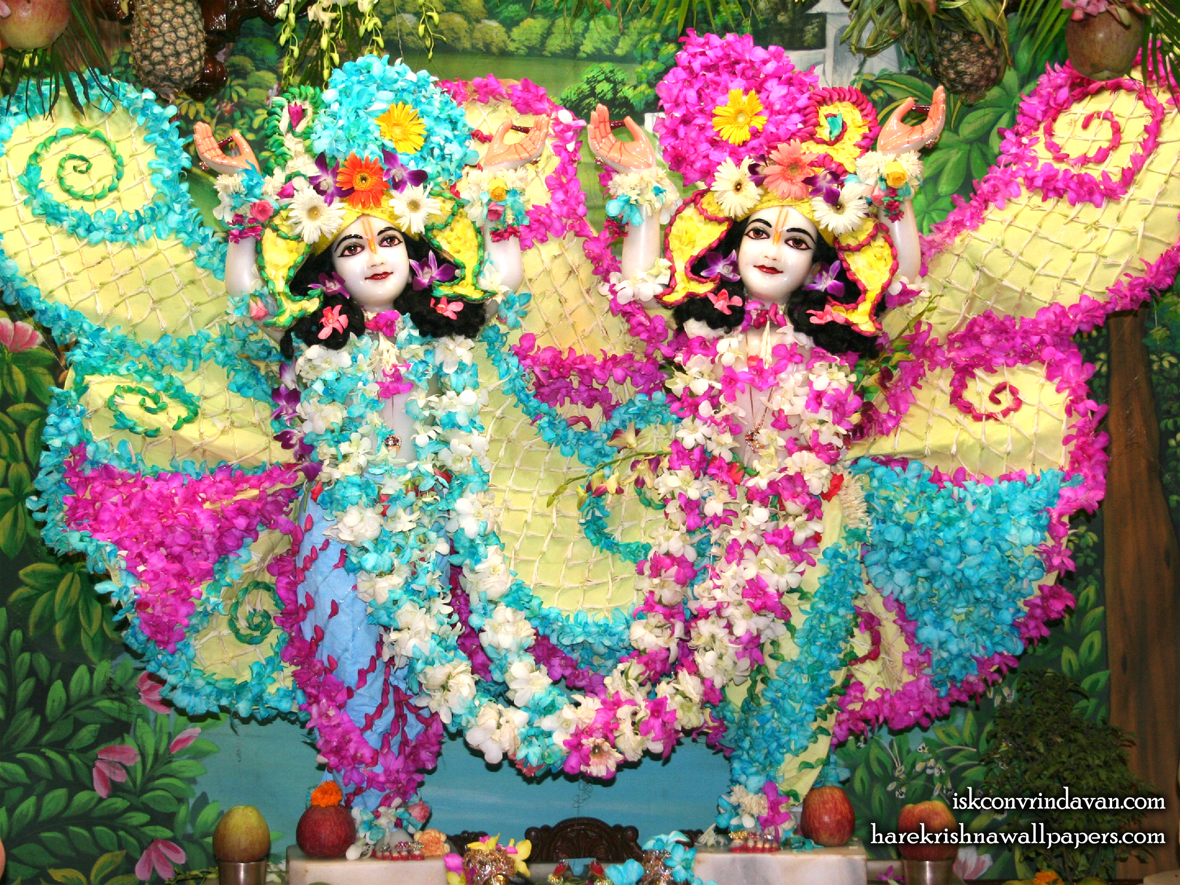 Sri Sri Gaura Nitai Wallpaper (087) Size 2400x1800 Download