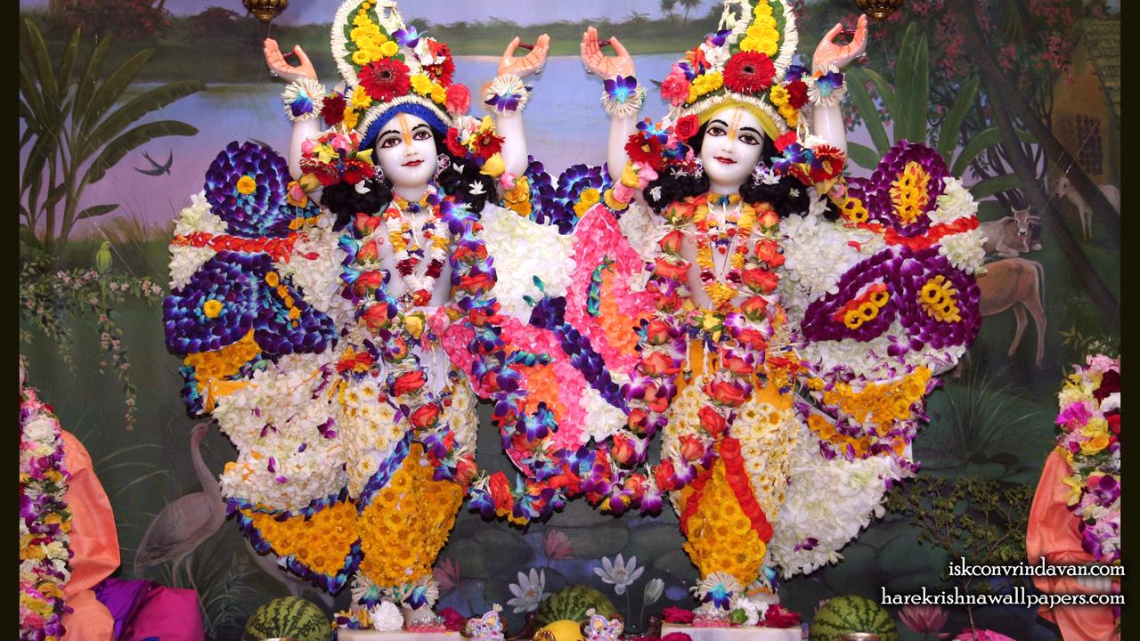 Sri Sri Gaura Nitai Wallpaper (088) Size 1280x720 Download