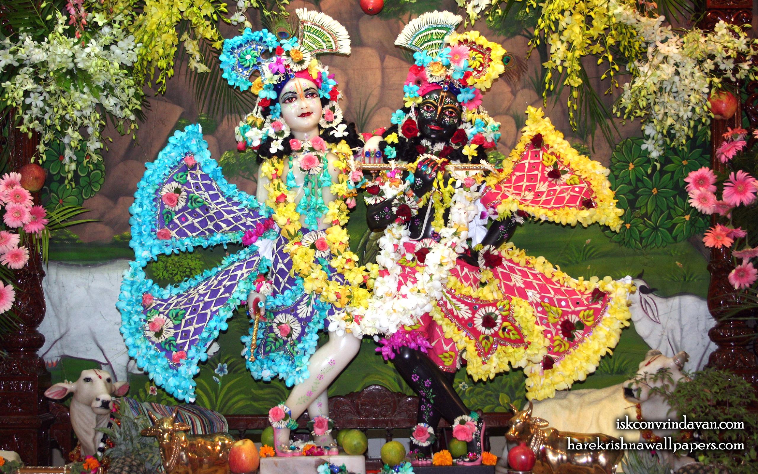 Sri Sri Krishna Balaram Wallpaper (108) Size 2560x1600 Download