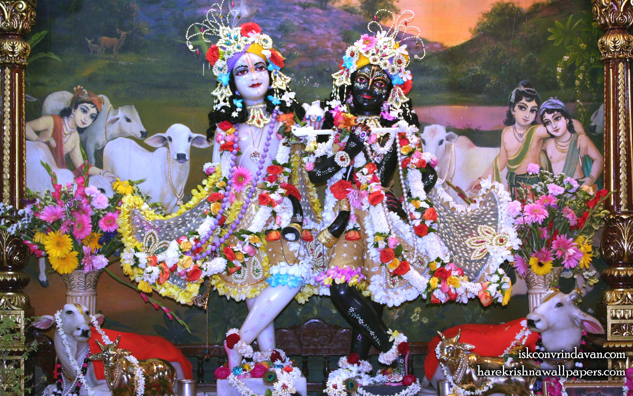 Sri Sri Krishna Balaram Wallpaper (109) Size 2560x1600 Download