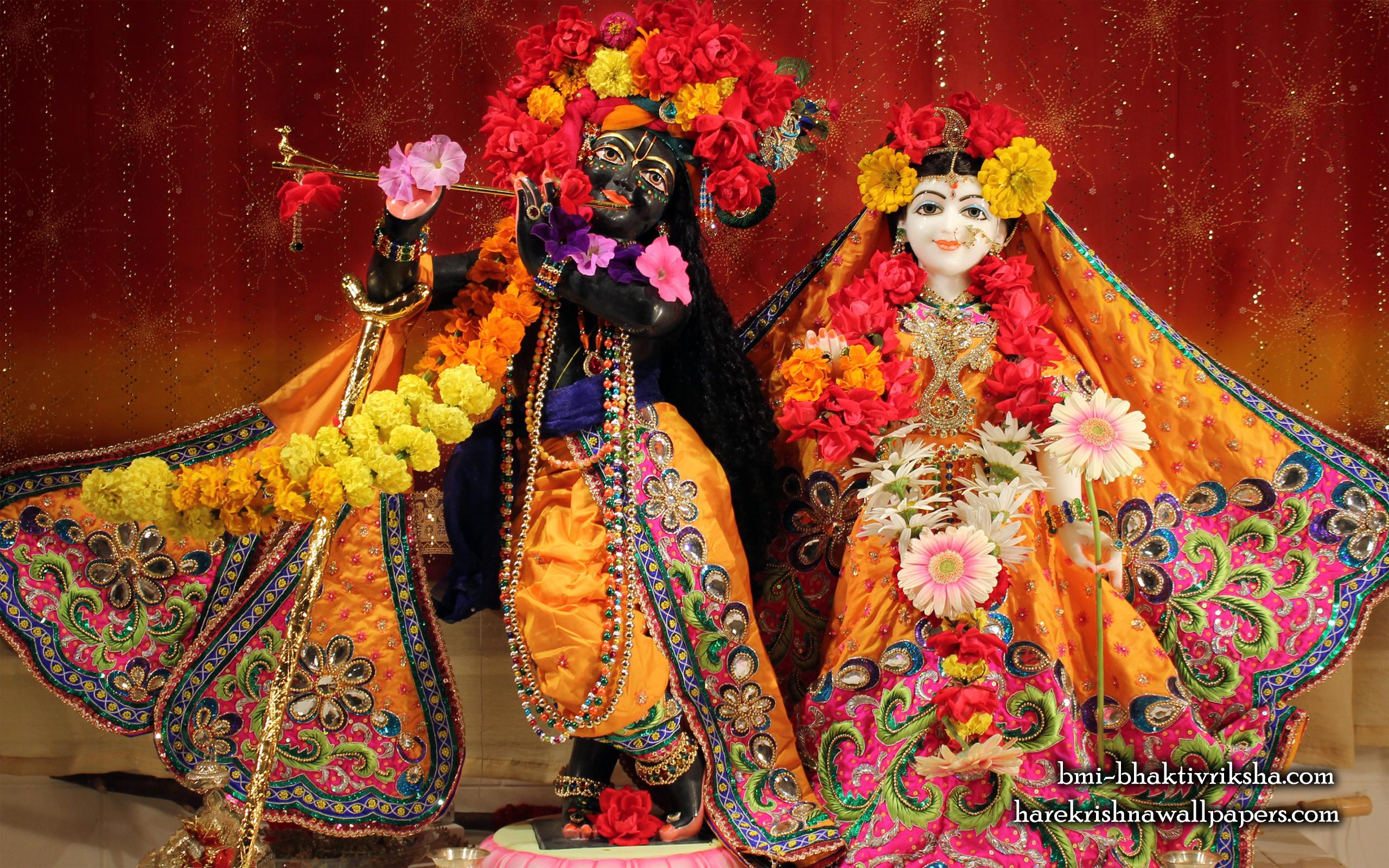 Sri Sri Radha Shyamsundar Wallpaper (001) Size 2560x1600 Download