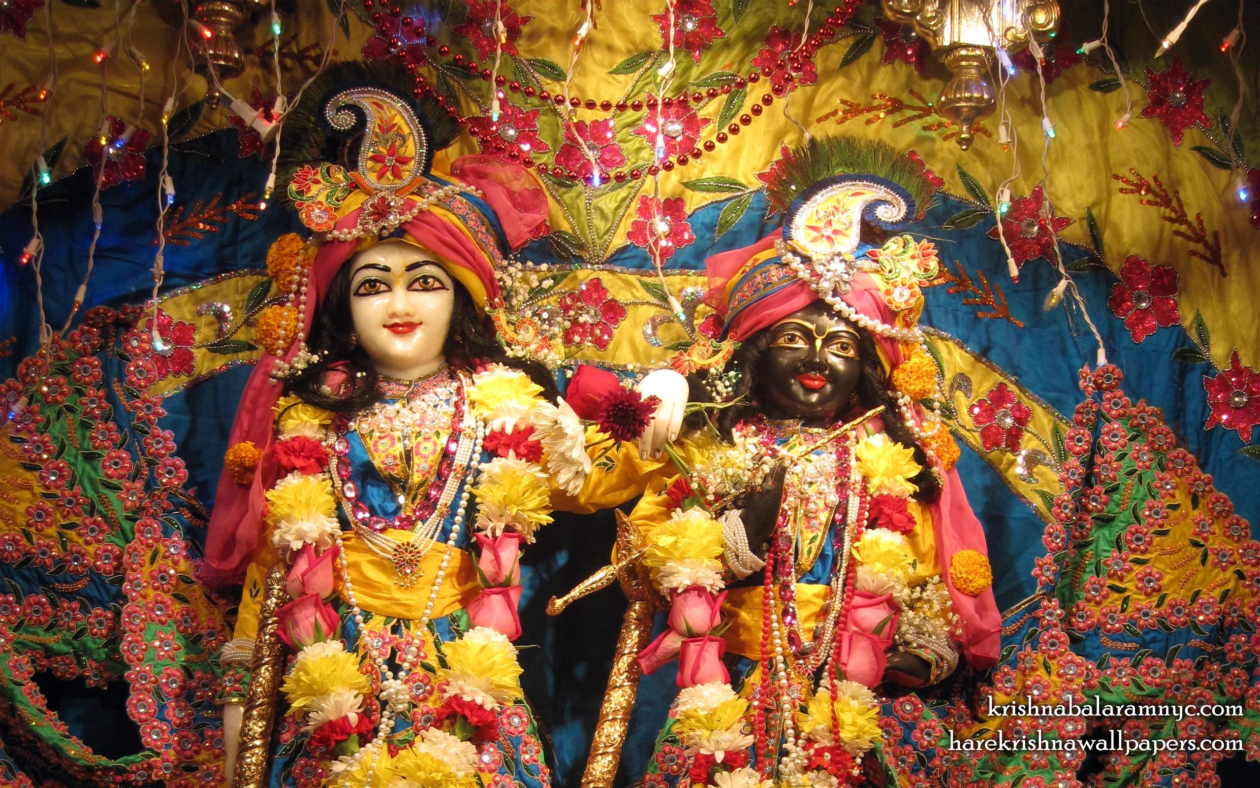 Sri Sri Hari Haladhari Close up Wallpaper (002) Size 2560x1600 Download